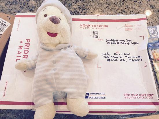 Grand Hyatt Kauai Resort & Spa: I wanted to say a huge thank you to the hotel for reuniting my son with his teddy left in our ro