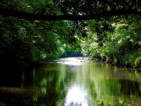 Roe Valley Country Park