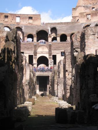 Mind the Guide: Underground Colosseum