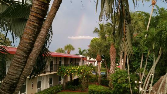 Gulfcoast Inn Naples : Near the pool