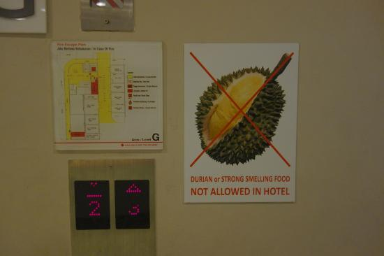 Tune Hotel Kota Bahru City Centre: no smelly foods