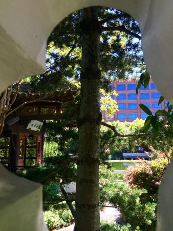 Old Town: Chinese garden from the street