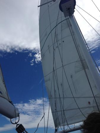 Star Charters Day Tour: More sail pictures