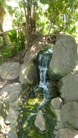San Mateo, Καλιφόρνια: Even a waterfall