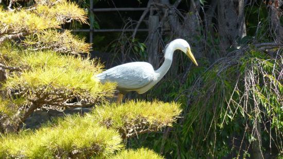 San Mateo, Καλιφόρνια: This bird is a statue
