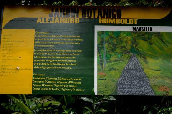 Brasil bild von kolumbien s damerika tripadvisor for Jardin kolumbien
