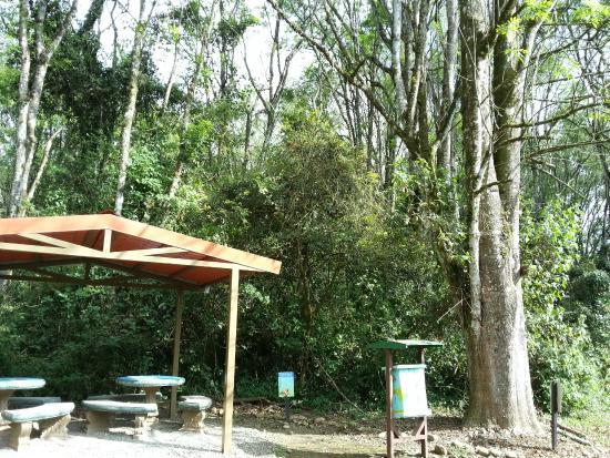 Parque Ambiental Municipal Rio Loro