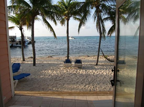 Little Cayman Beach Resort: Beach view.