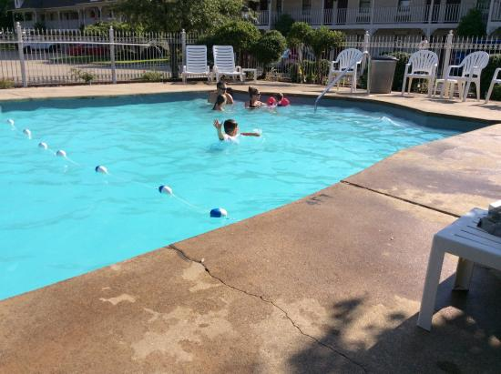 Queen of Diamonds Inn: The pool was small but everyone had a good time.