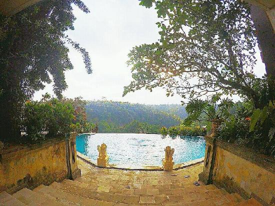 Infinity Pool Overlooking The Forest Picture Of Rijasa Agung
