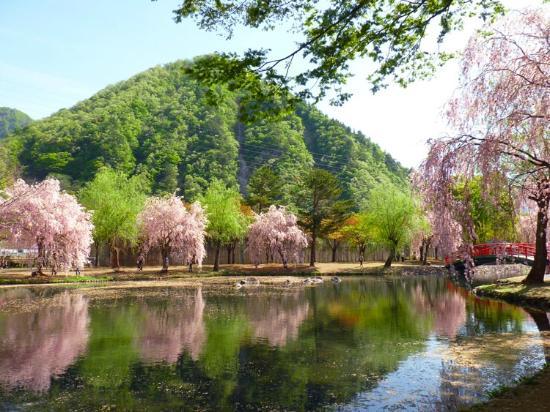 Yuzawa Central Park