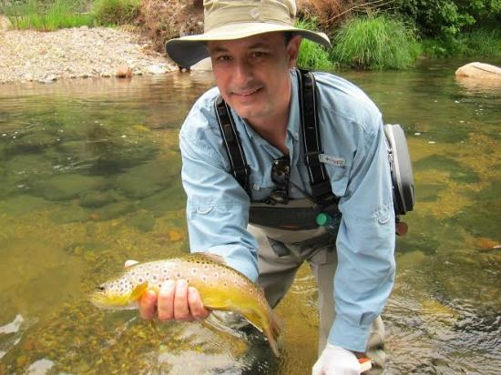 Nice brown in oak creek canyon with sedona fly fishing for Silver creek fishing report
