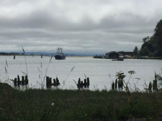 Ilwaco, WA: Another view from the park