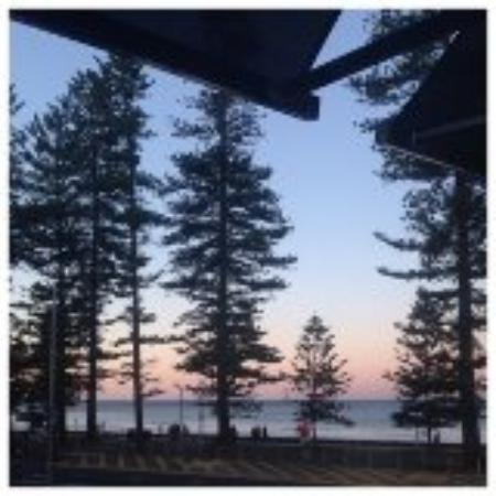 Manly Paradise Motel & Apartments: View from our room at sunset - love those trees!