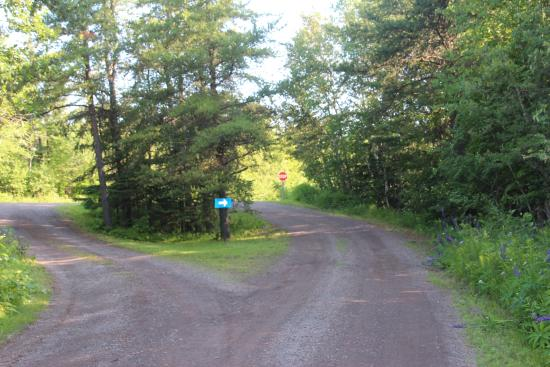 Bob's Cabins on Lake Superior's North Shore: Two roads diverged in a yellow wood….