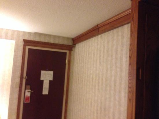 Ramada Saginaw Hotel & Suites: Crown molding and trim, not just in the room, but throughout the hotel.