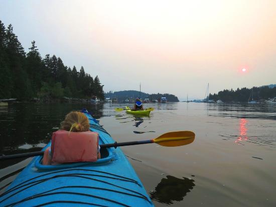 Sunshine Coast Resort Hotel & Marina: evening kayaking