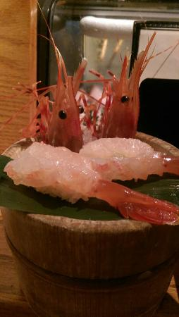 Kanpai Sushi Bar and Grill: ama ebi...yum