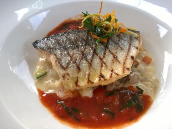 Seegarten: Vorspeise: gegrillter Fisch mit Gemüse und Risotto