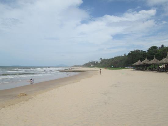 Ocean Vista Resort: Чистый пляж