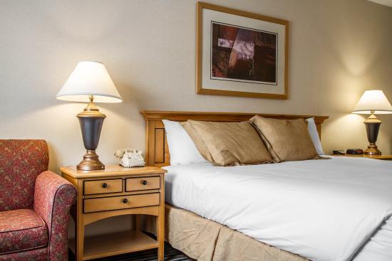 Econo Lodge Freeport: Guest Room