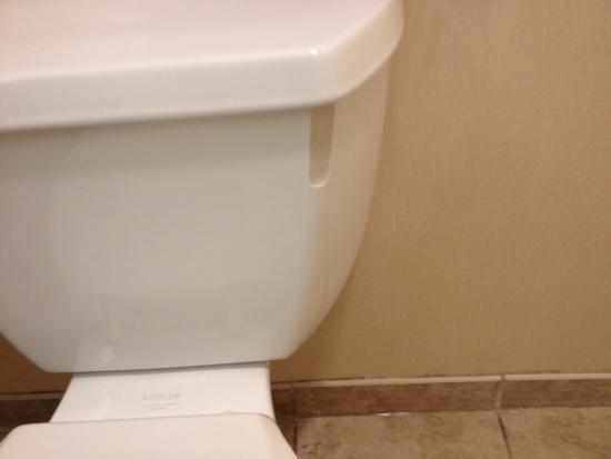 Hampton Inn & Suites Dayton-Airport: Toilet in our room