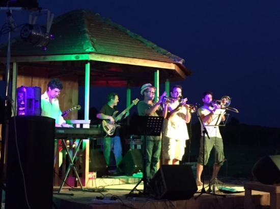 Labyrinthe Végétal Les Fées Mères : le groupe : dans ta cave orchestra le 3 juillet 2015