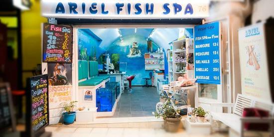 Ariel Fish Spa