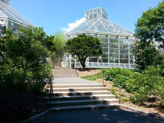 Inside The Palm House Picture Of Brooklyn Botanic Garden Brooklyn Tripadvisor