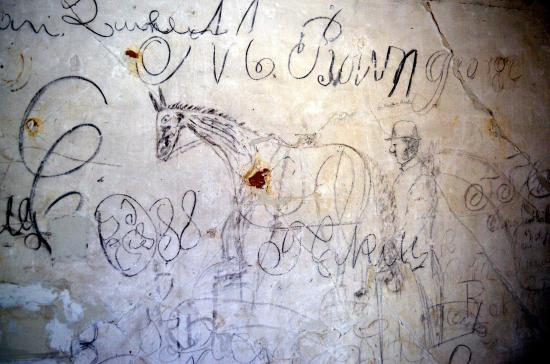 Brandy Station, VA: Horse drawing