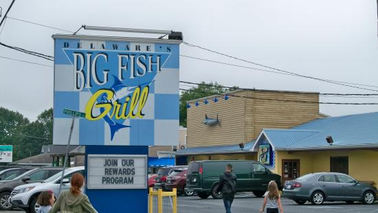 Crab sandwich and fries picture of big fish grill for Big fish restaurant