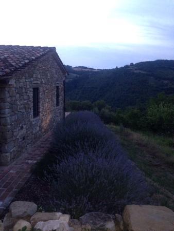 Agriturismo Montelovesco: Esterni e soggiorno in comune