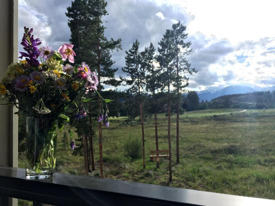 Evergreen Condominiums: our view