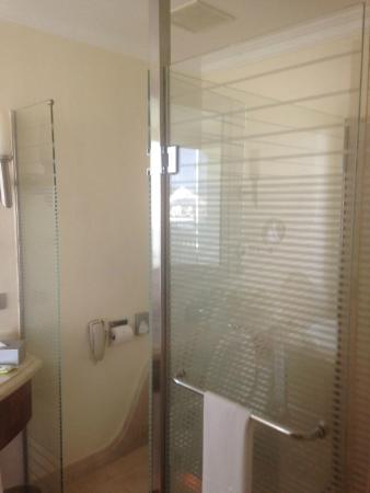 The very nice shower/toilet area