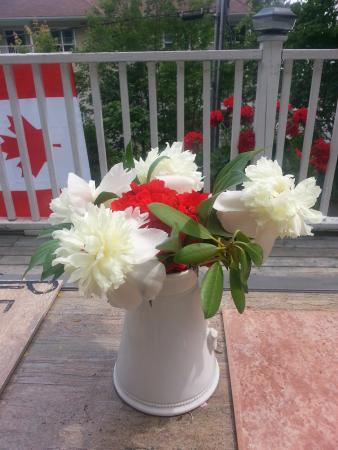 Ascendence Harbourside Mansion Bed & Breakfast Halifax: Flowers On The Deck