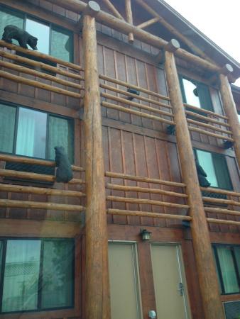 BEST WESTERN PLUS Kelly Inn & Suites : Fun decor