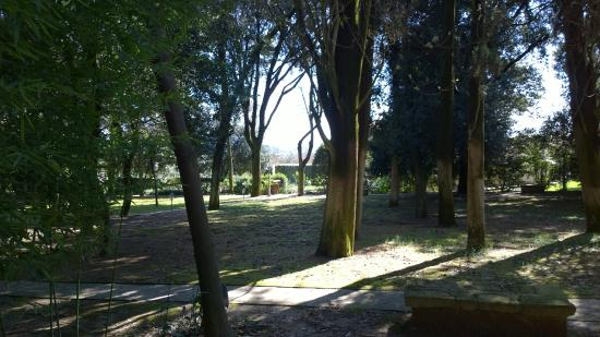 Montecorneo Country House: Natura circostante