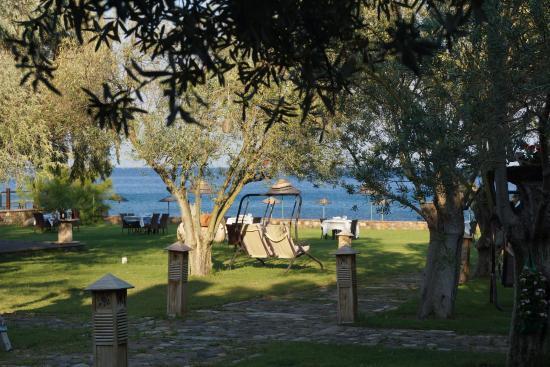 Calidus Hotel: Huzur Dünyası