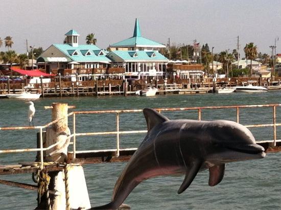 St. Petersburg / Clearwater Area Convention & Visitors Bureau : photo8.jpg