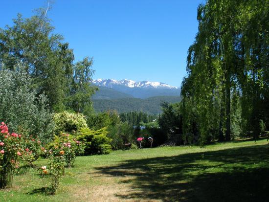 Cabanas Cerro Amigo: Jardín posterior