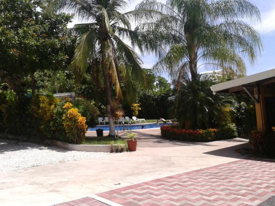 Hotel La Punta : Area de Piscina