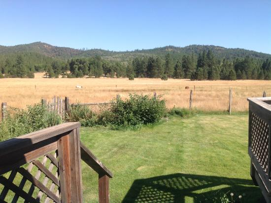 ‪‪Big Creek Meadow Ranch‬: View from back deck‬