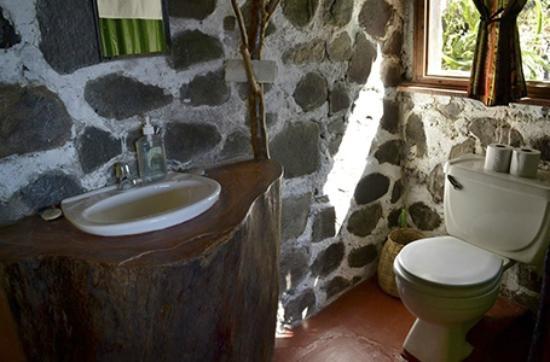 Hotel el Arca de Noe: Natutal decor