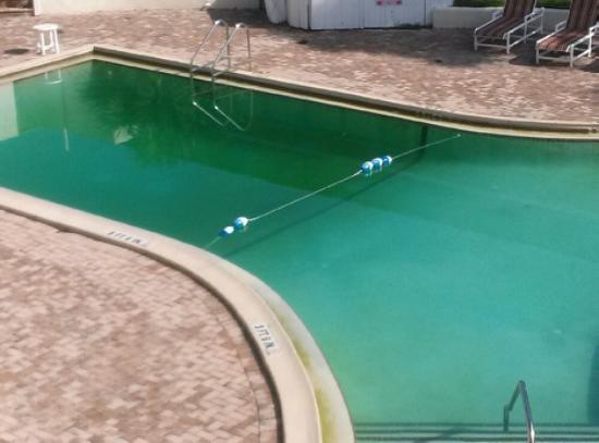 Days Inn & Suites Clermont: Pool