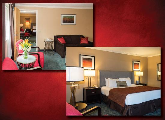 UGA Hotel & Conference Center at The Georgia Center : Executive King Suite