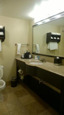 Hampton Inn Biloxi / Ocean Springs: Nice clean bathrooms.  Modern.