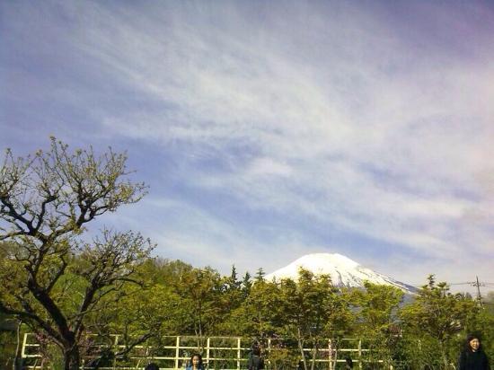 Fuji Matsuzono Hotel : photo1.jpg