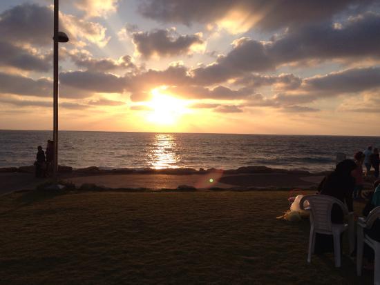 Beach at Tel Aviv sitting at Tsfoni