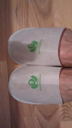 Hotel Djingis Khan: paper slippers