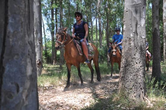 Pinar Horse Safari